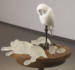 Still Life with Owl, 2007 - Photography courtesy of Esplanade