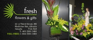 Fresh Flowers & Gifts