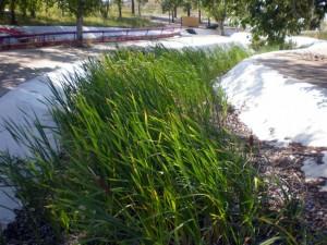 Medicine Hat Riverside Water Slides